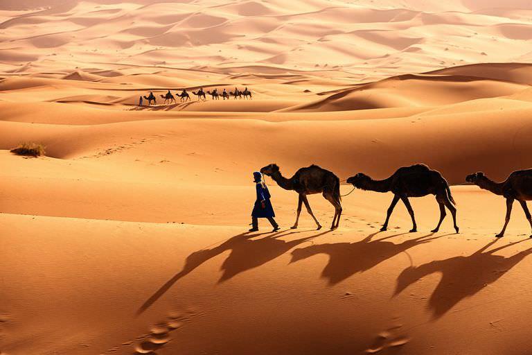 Пустеля Сахара: фото, цікаві факти, географічне розташування
