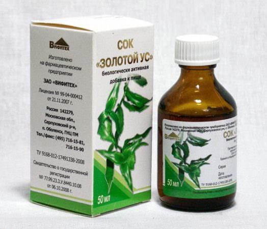 Золотий вус: лікувальні властивості, протипоказання, рецепти