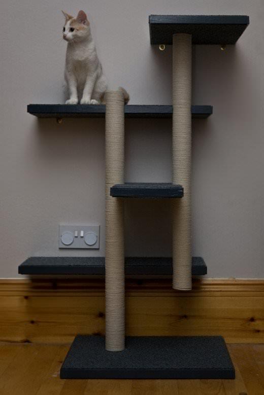 Як зробити когтеточку для кішки: своїми руками?
